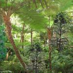 Fig. 4 - Ricostruzione approssimativa di un bosco di 200 M.a.f.