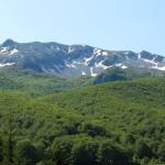 Fig. 2 - Circhi Glaciali, Coste del Viglio.