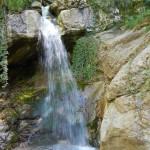 Cascata del Fiume Cosa, Guarcino. Copiose sorgenti alimentano questo corso d'acqua, importante anche dal punto di vista idrogeologico. Vedi articolo Idrologia e Paleontologia.