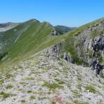 Creste da M. Pizzo Deta verso M. del Passeggio. Ampi Circhi Glaciali sono lungo i versanti Nord. Vedi articoli di Geologia e Geomorfologia.