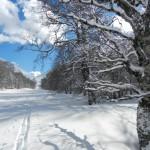 Pressi Pozzotello. Di origine glaciale, presenta diverse testimonianze dell'azione glaciale. Vedi articoli di Geomorfologia e Idrologia.