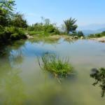 Sorgente del Peschio, pressi Vico nel Lazio. Una delle numerose sorgenti ai piedi del M. Monna. Vedi Articoli di Geologia e Idrologia.