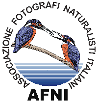 logo_afni_small
