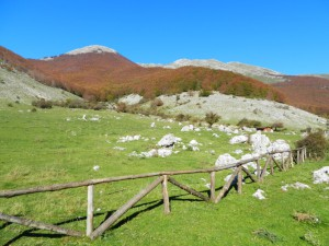 Prato di Campoli