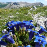 Monte Crepacuore