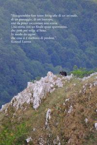 side_libro_ernico